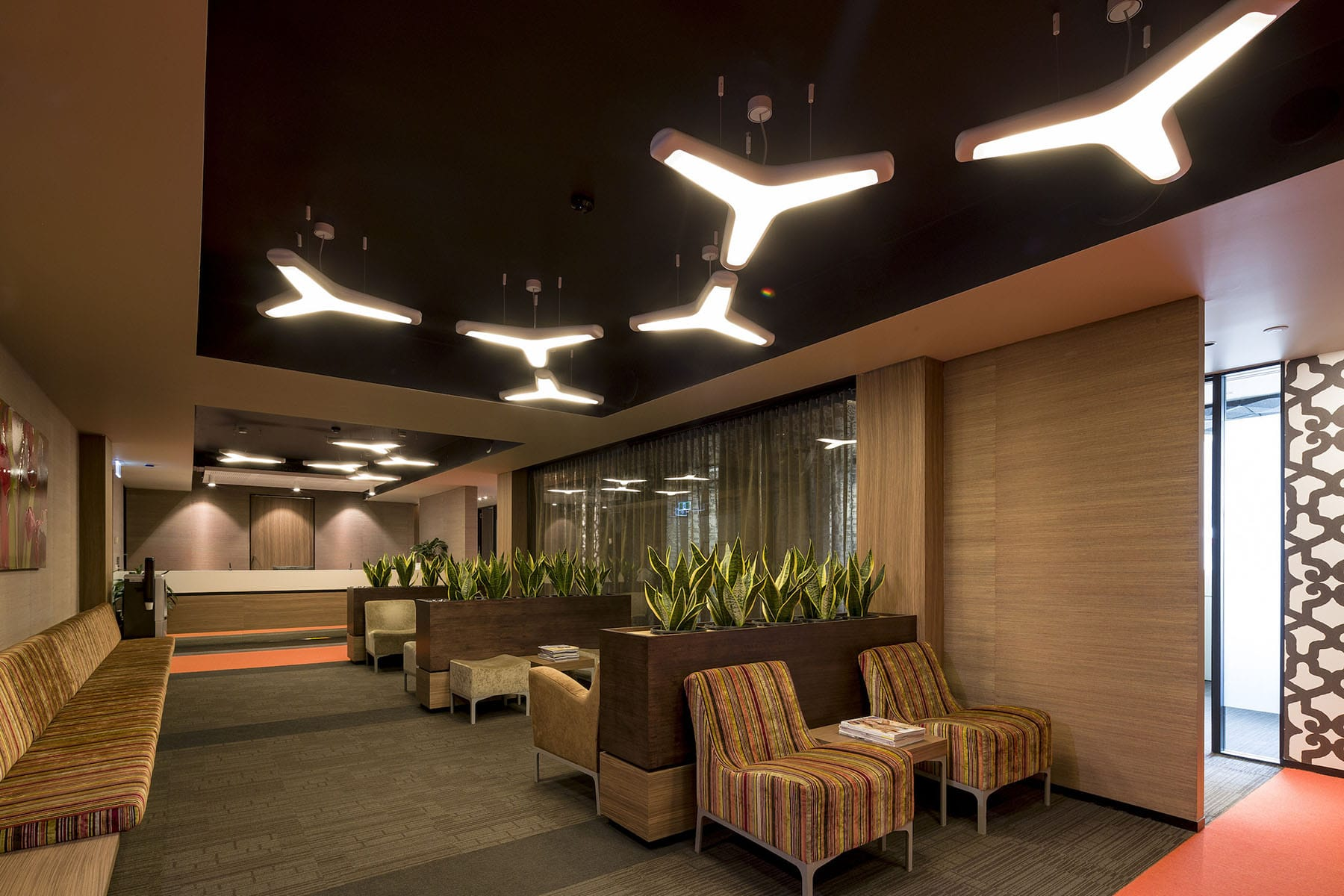 Create It Constructions - Medical Fitout. Health Fitout. Doctors Fitout. Waiting Room Fitout. Specialist Design Fitout Construction Company Brisbane. Shared Office Fitout.
